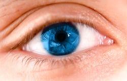 blått öga Fotografering för Bildbyråer