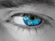 blått öga Royaltyfria Foton
