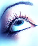 blått öga Arkivfoto