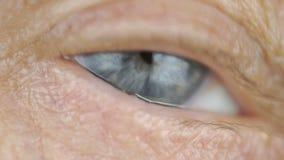 Blått öga av den medelåldersa kvinnan close upp stock video