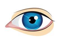 Blått öga för vektor Royaltyfria Foton