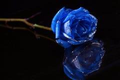 blått Royaltyfri Fotografi