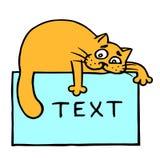 Blått ark med text- och apelsinkatten överst Arkivfoto