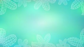 Blått baner med den vita dekorativa påskliljan arkivbild