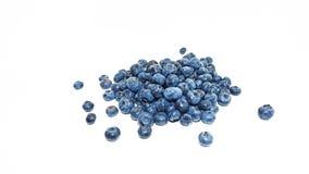 Blått blåbär Royaltyfri Fotografi