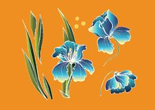 Blått blommar på orange bakgrund royaltyfri illustrationer