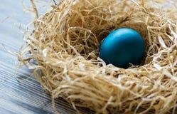 blått easter ägg Arkivfoto