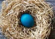 blått easter ägg Royaltyfri Foto