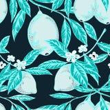 blått färgad citronmodell stock illustrationer
