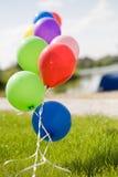 blått färgrikt gräshelium för baloons mitt emot skyen Royaltyfri Fotografi