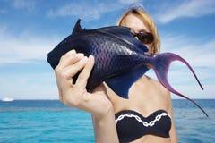 blått fiskhav Royaltyfri Fotografi