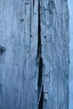 blått gammalt väggträ Arkivfoton