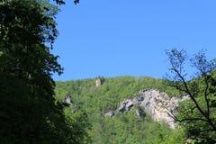 Blått-gräsplan horisont Arkivbilder