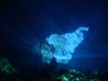 blått hål Arkivfoton