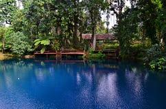 Blått hål i Espiritu Santo Island, Vanuatu Royaltyfri Bild