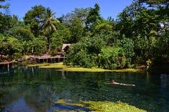 Blått hål i Espiritu Santo Island, Vanuatu Royaltyfria Foton