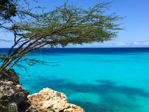 Blått hav av Curacao Arkivfoton