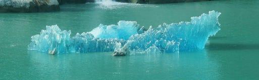 Blått isberg som smälter i Tracy Arm Fjord, Alaska Arkivfoton