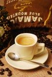blått kaffeberg Arkivfoto