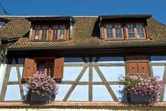 Blått korsvirkes- hus Arkivfoton