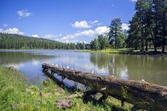 Blått Lake Royaltyfri Foto
