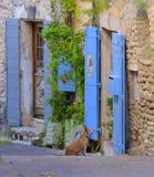 Blått målade dörrar i Provence Arkivbild