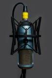 Blått och guld för studiokondensatormikrofon royaltyfri fotografi