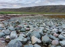 Blått- och rosa färgstenar på kusten av det Barents havet, Varanger halvö, Finnmark, Norge Royaltyfria Bilder