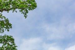Blått och Smokey Cloud Sky Background royaltyfri foto