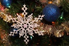 Blått och snöflinga Fotografering för Bildbyråer