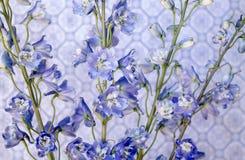 Blått på blått Arkivbilder