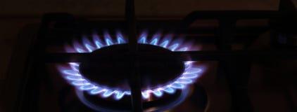 Blått-röd flamma på gasspisen Royaltyfria Foton