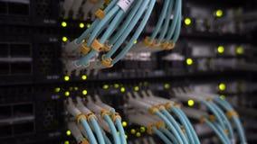Blått slut för optisk kabel upp Arbetsserver arkivfilmer
