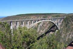 Blått sträcker på halsen bruden i Sydafrika för bungeebanhoppning royaltyfri foto