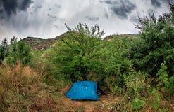 Blått tält i busken arkivfoto