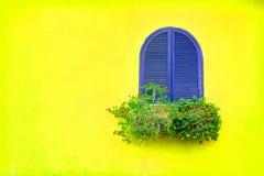 Blått tappningfönster för lilor med träblommaasken på vibrerande yel Royaltyfria Bilder