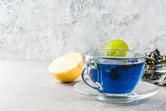 Blått te för blomma för fjärilsärta arkivbild