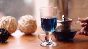 Blått te för fjärilsärtan för viktförlust från blommaClitoria på tabellen i kafét hälls in i en genomskinlig kopp arkivfilmer