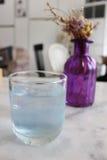 Blått tonat växt- vatten i ett kafé Arkivfoto