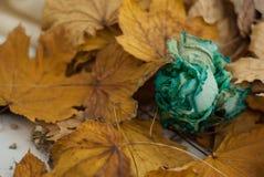 blått torkar rosa Royaltyfri Fotografi
