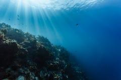 Blått vatten av vändkretsarna bryter solstrålar ner till korallreven i karibiskt Arkivfoton