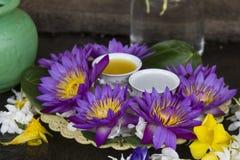 Blått vatten Lily Temple Offering Royaltyfri Bild