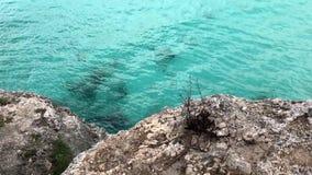 Blått vatten på Curacaoen arkivfilmer