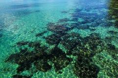 Blått vatten på den Kood ön Arkivbild