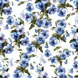 Blåttblommor 3 Arkivbild