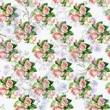 Blåttblommor och rosor, vattenfärg Arkivbilder
