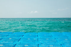 Blåttboj fördjupade till havet Fotografering för Bildbyråer