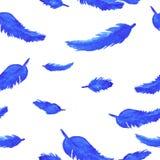 Blåttfjädrar på sömlös modell för vit bakgrund Arkivbild