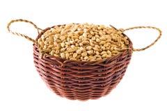 blé photo libre de droits