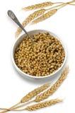 Blé cuit Image stock